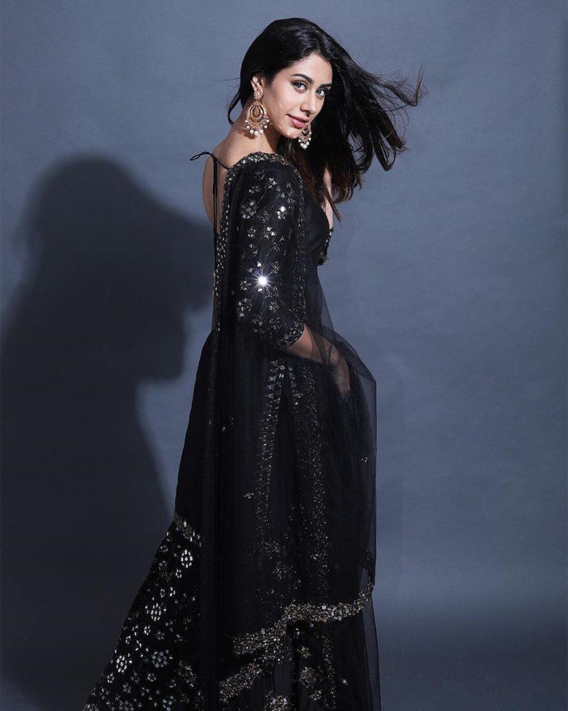 Warina hussain loveyatri